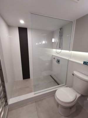 modern basement bathroom renovation